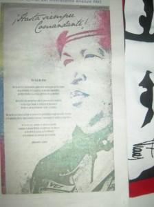 20130406-Venezuela-Arte
