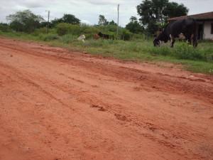 Paraguay-Tierra