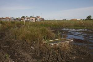 Campo en Berisso.