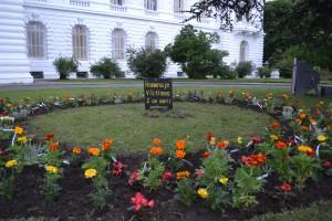 El jardín levantado por los familiares en la entrada del palacio municipal, sobre la calle 12.