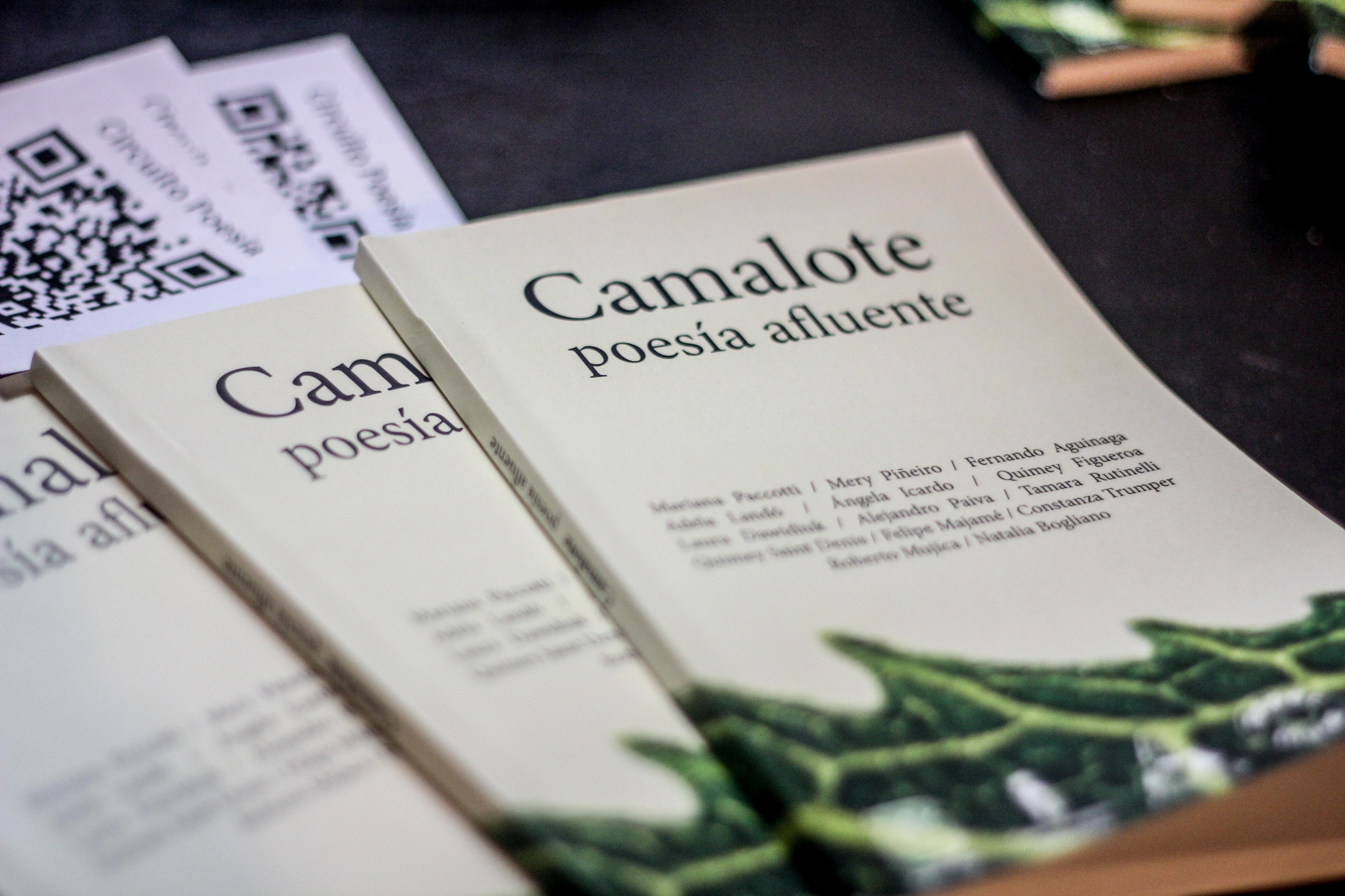 Cinco editoriales se reunieron para publicar a 14 poetas locales