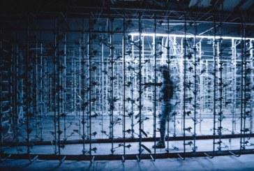 URDIMBRE: Una obra teatral en una histórica cooperativa platense a punto de cerrar